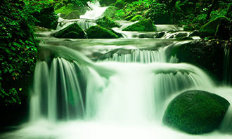 A waterfall in a green forest.