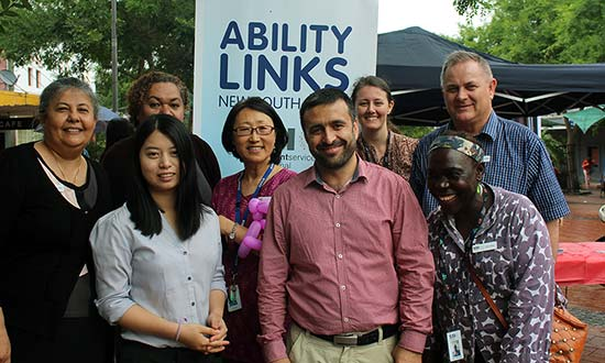 Ability Links NSW Linkers